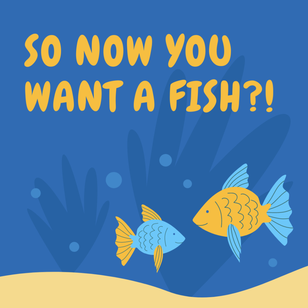 Now you want a fish?!
